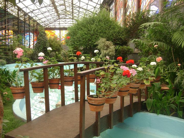 Mxcity for Como ir al jardin botanico
