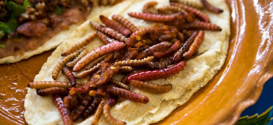 4 lugares pintorescos para comer barbacoa en la ciudad for Comida para barbacoa