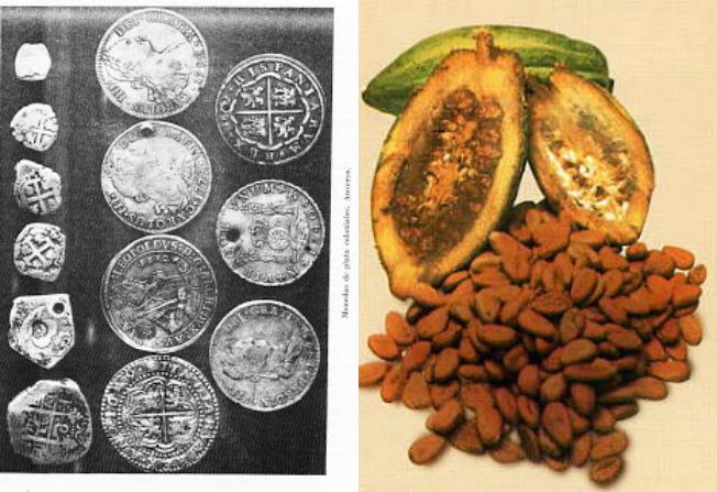 cacao moneda