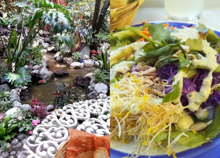 el jardin interior-