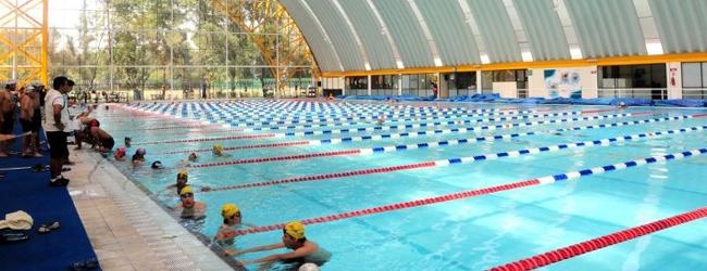 Mxcity for Clases de natacion df