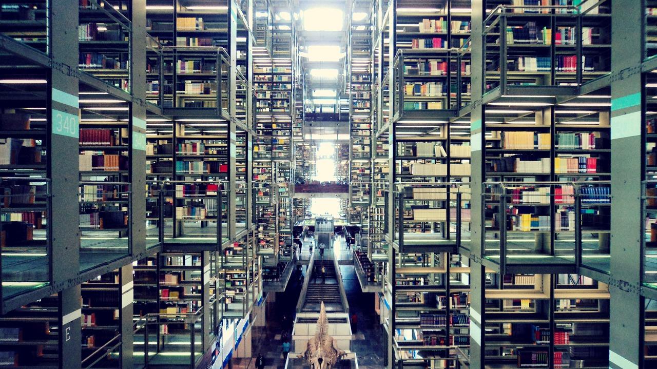 Biblioteca VC
