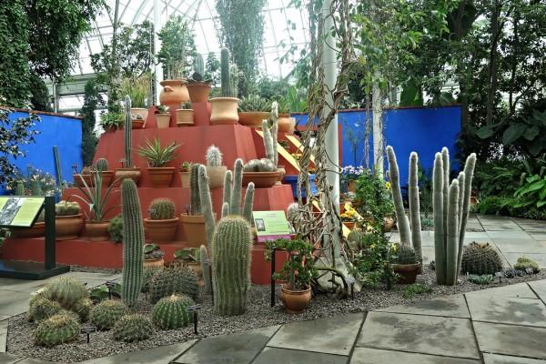 jardin-de-frida-kahlo