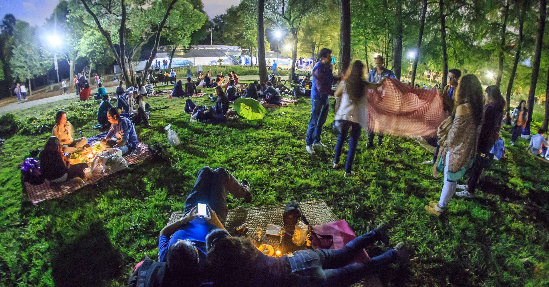 picnic-nocturno