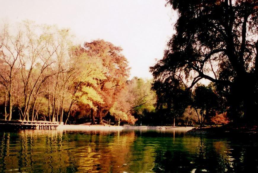 otono-chapultepec