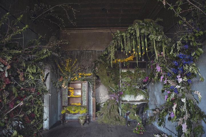conveertir-casas-abandonadas-en-invernaderos-mxcity