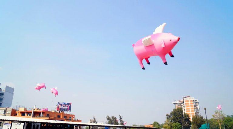 cerdos vuelen