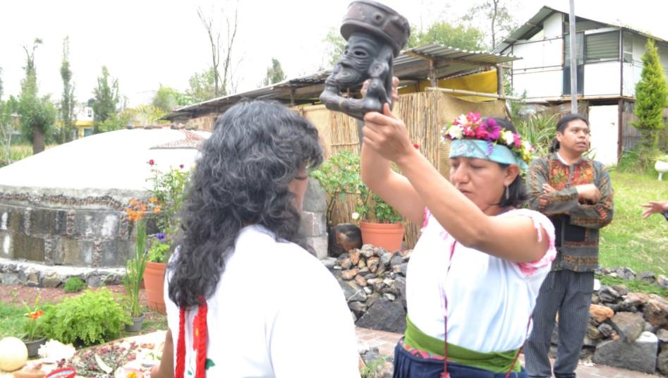 casas de medicina tradicional