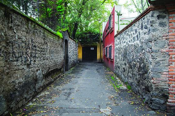 callejon aguacate