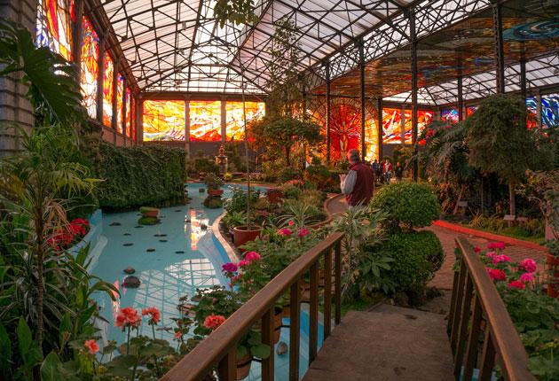 mxcity On jardines botanicos en mexico
