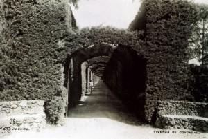 antiguo barrio de Coyoacán