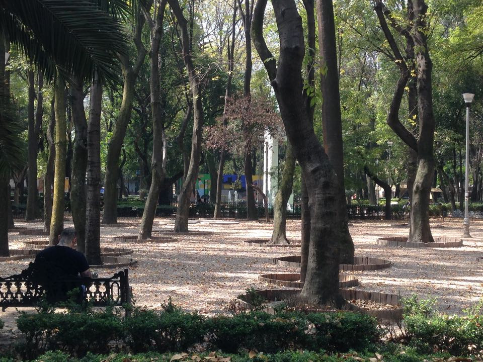 archivo xcity parque mexico
