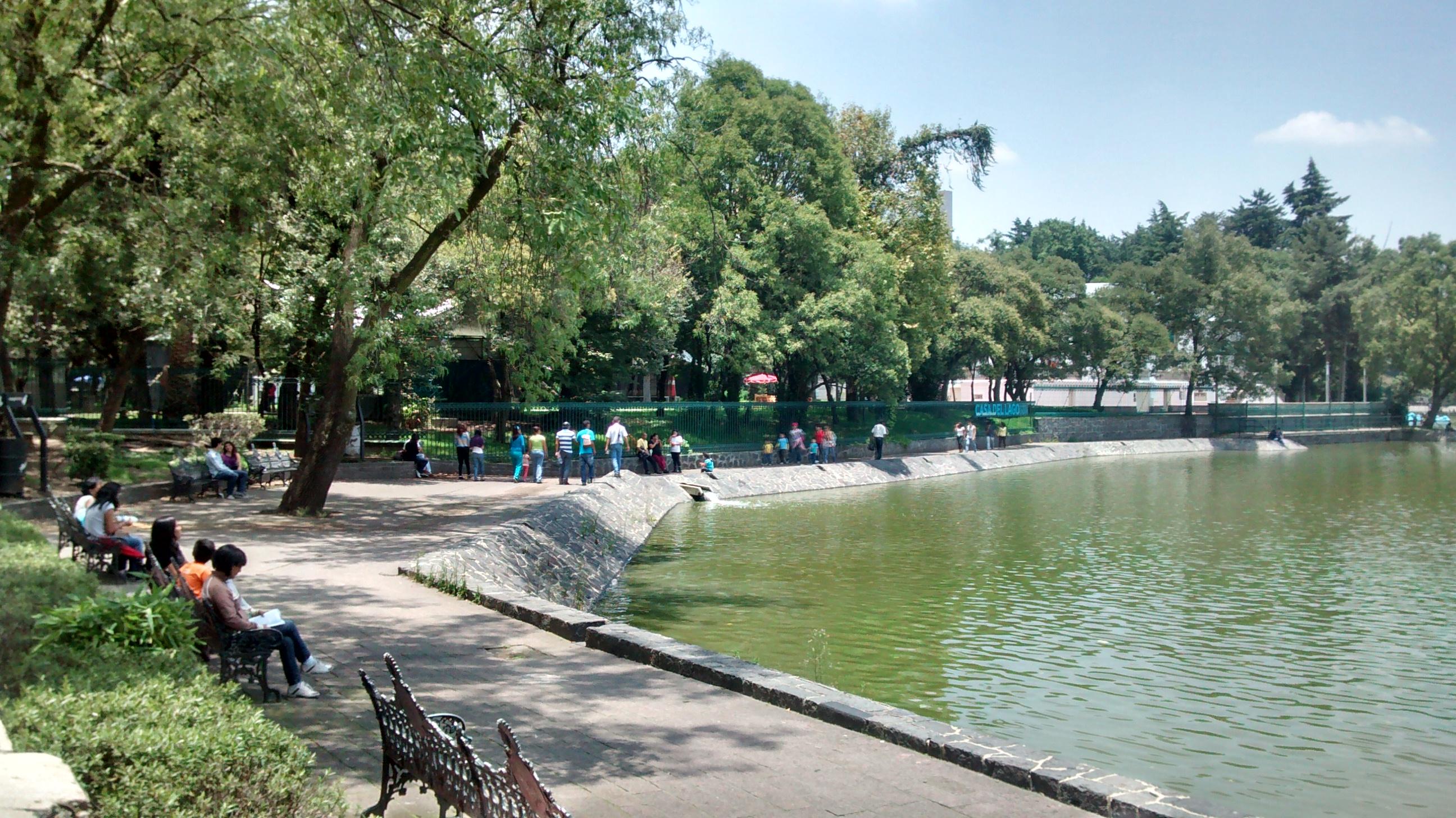 Los mejores 7 lugares dentro del bosque de chapultepec for Jardin xochimilco mexicali