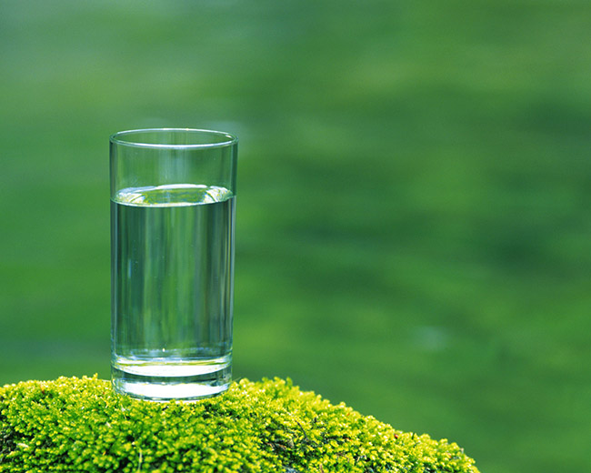 glass-water-on-moss-food-1-screensaver