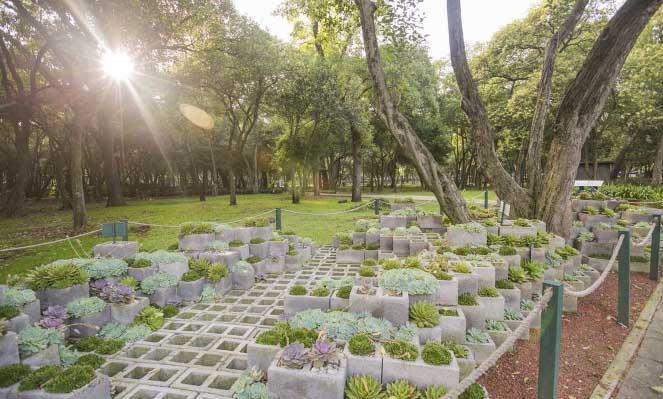 Jardin botanico de chapultepec