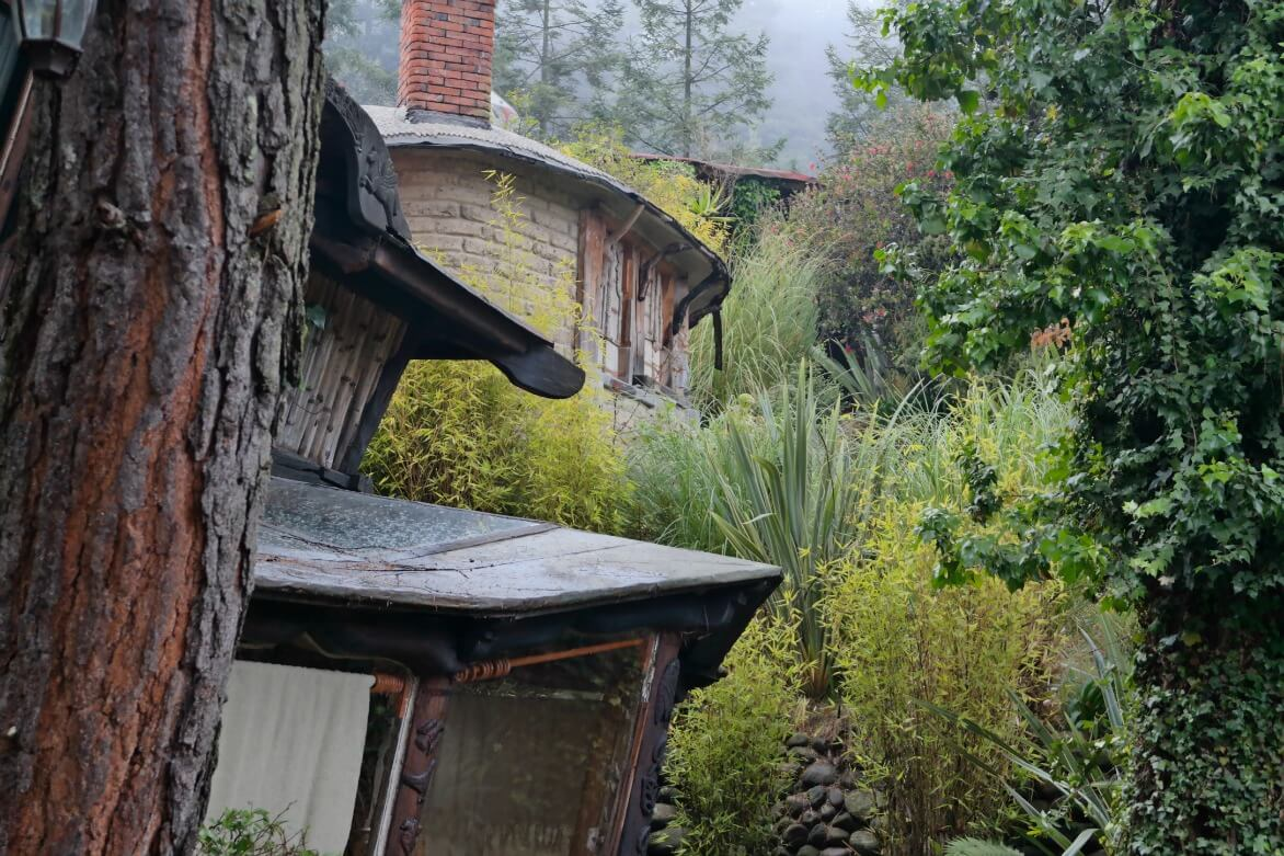 casa del rbol donde un espacio se convierte en una pieza de arte o mejor an en una armona de trazos que la naturaleza y la