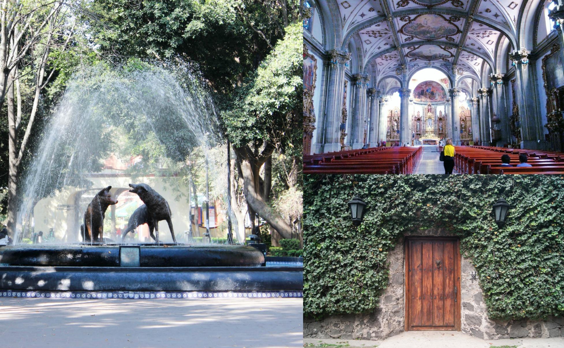 coyoacan ciudad de mexico MXCity