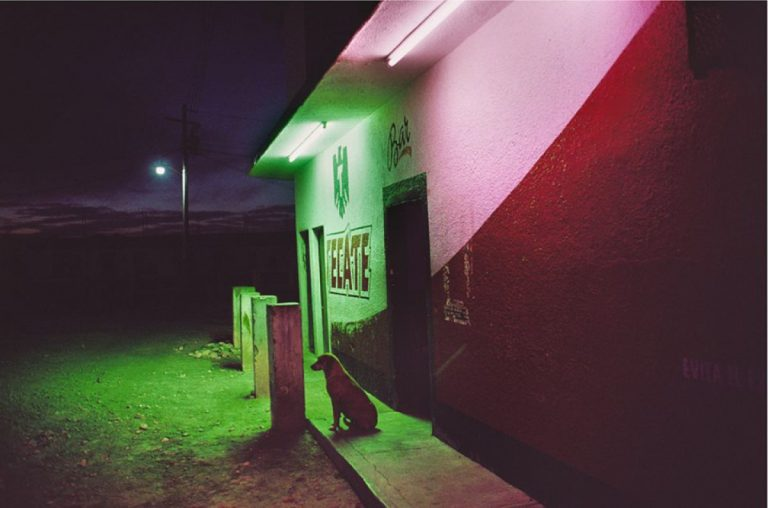 alex webb mexico colores