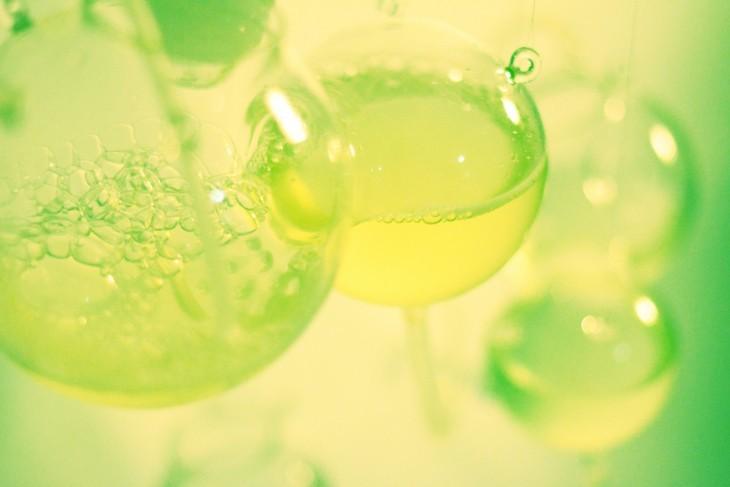 algaetecture