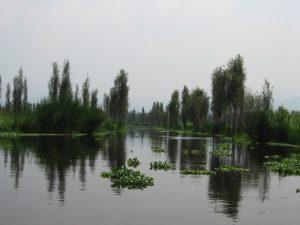 chinampas_xochimilco