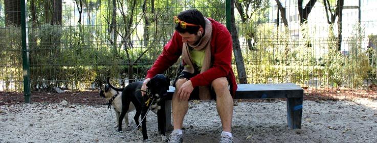parque-pushkin-perros