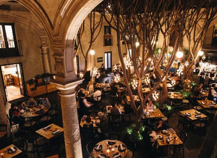 Best Restaurants Centro Historico Mexico City