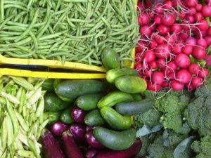 vegetales_organicos