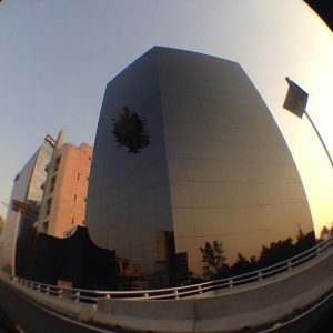 la-torre-del-arbol-edificio-del-arbol-ciudad-de-mexico