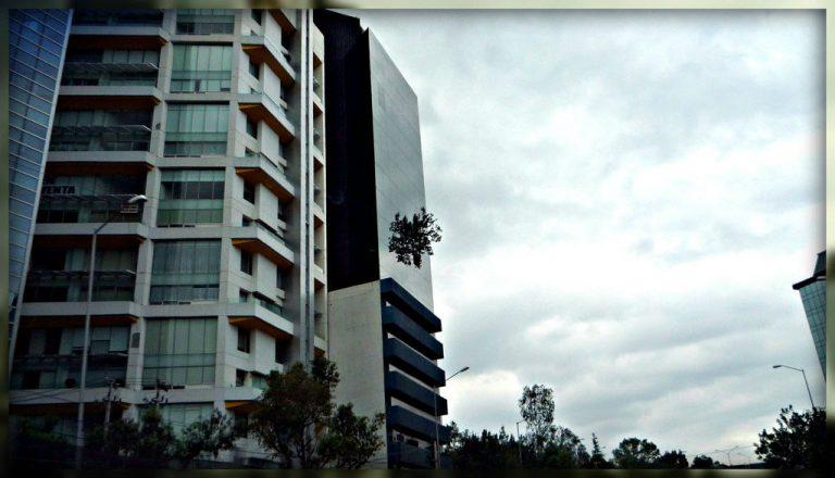 la torre del árbol edificio del árbol ciudad de mexico