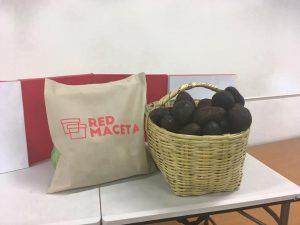 red-maceta-canasta
