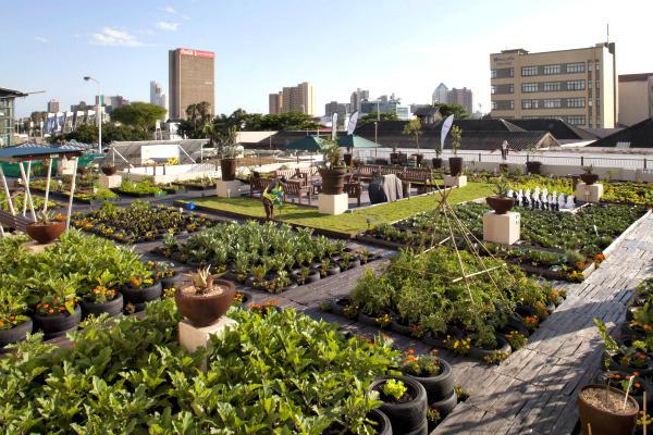 huerto urbano mas grande de latinoamerica cdmx