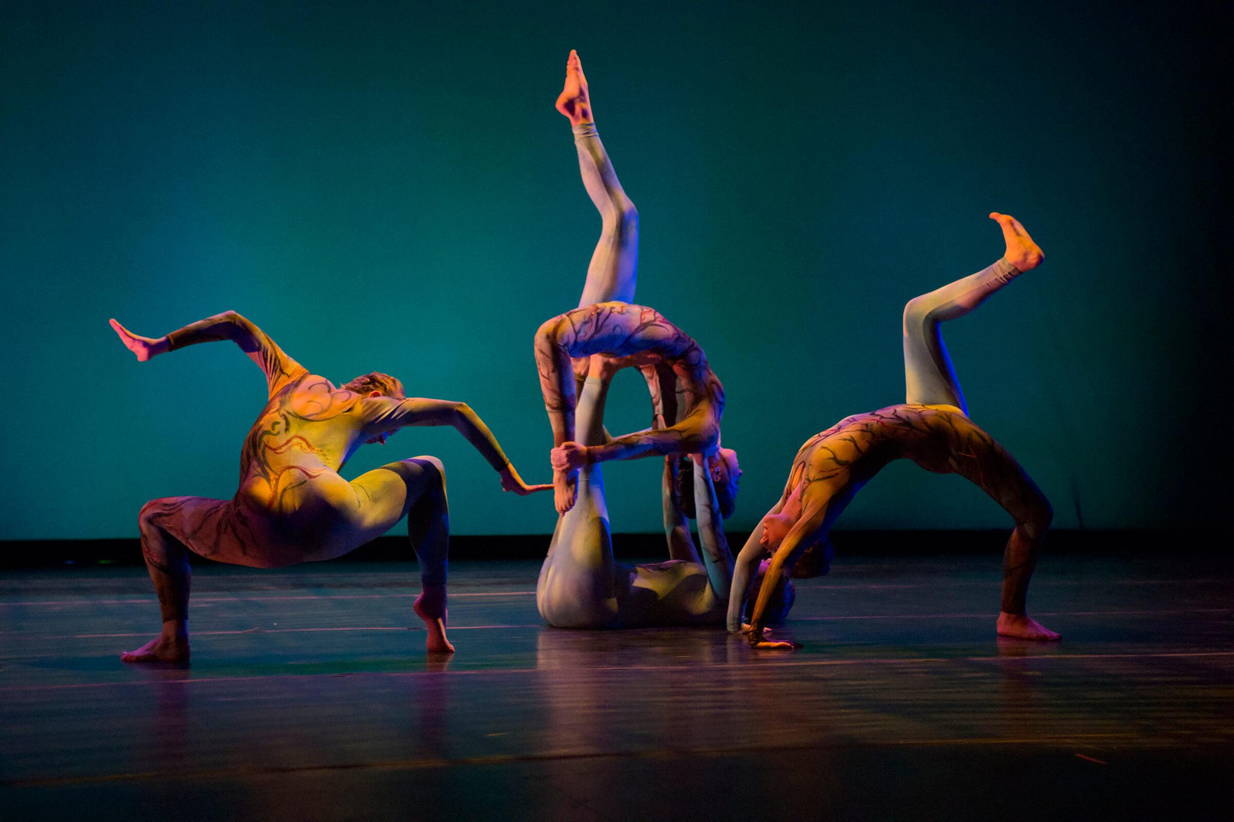 danza4