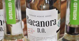 Bacanora