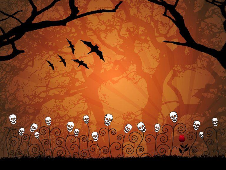 Asombrosas Animaciones Del Día De Muertos (VIDEO