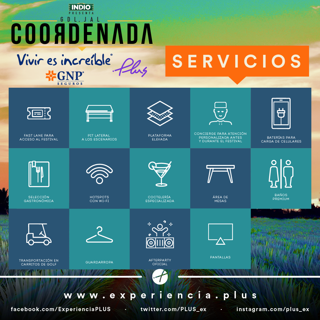 SERVICIOS COORDENADA