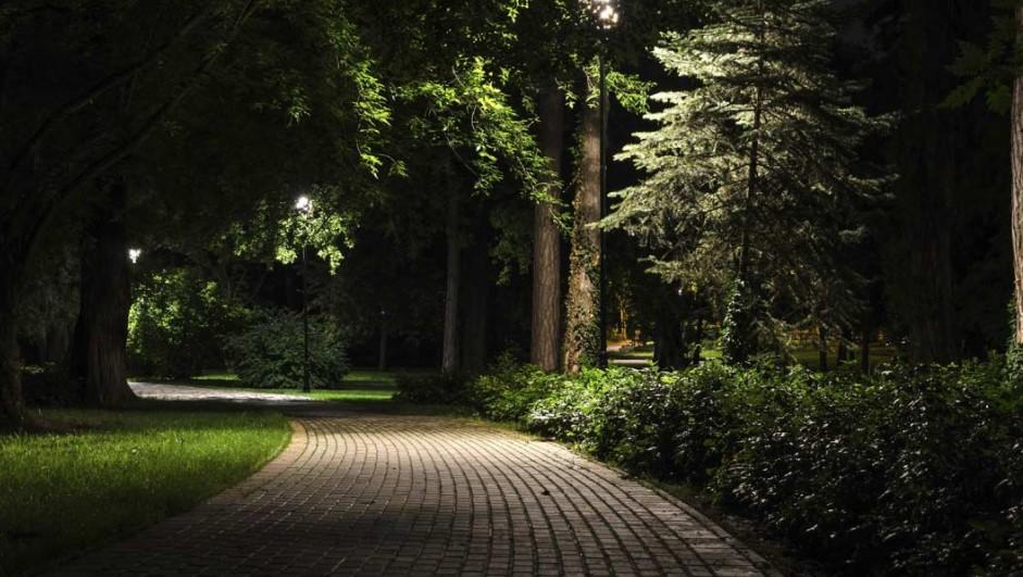 paseos nocturnos
