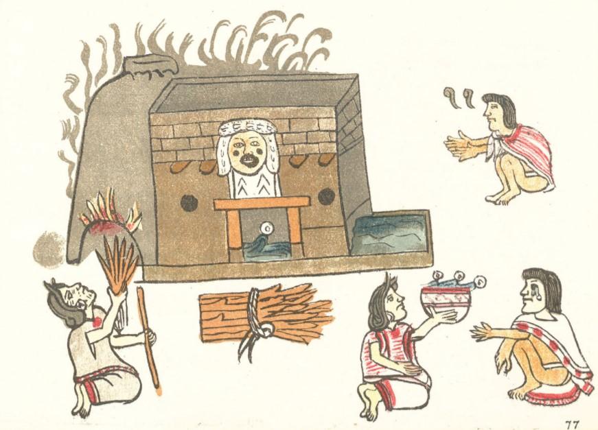 casas de medicina tradiciona