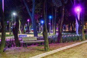 parque5