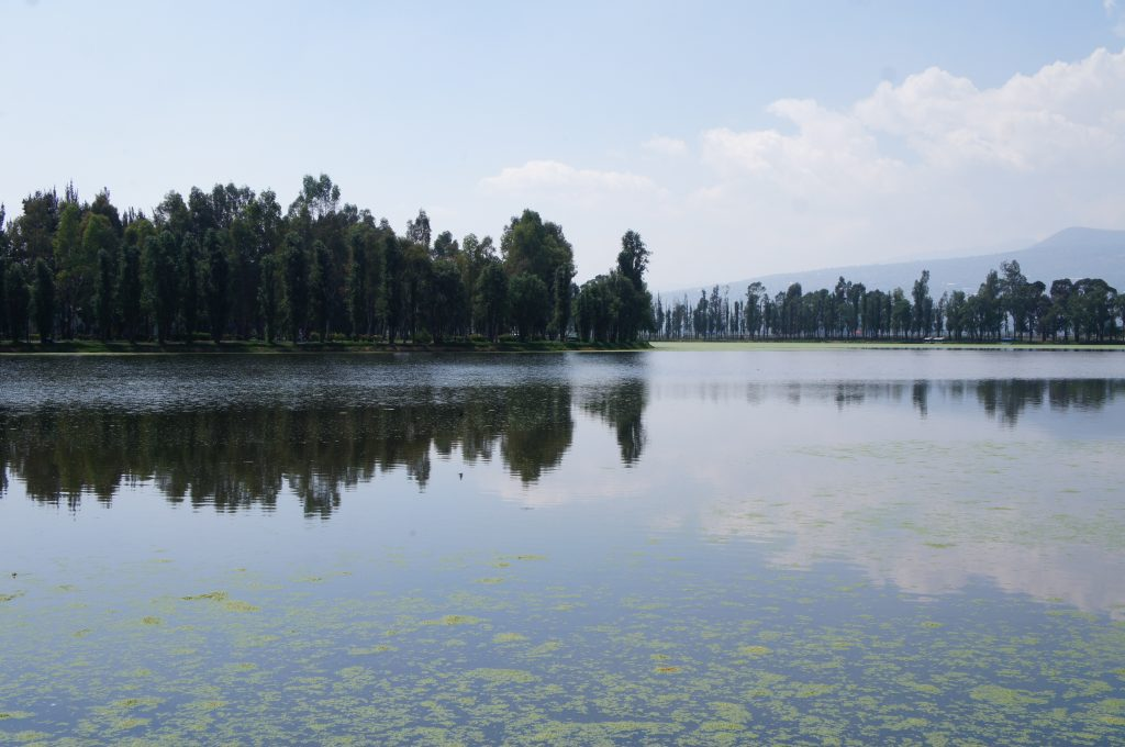 La cdmx tiene un nuevo lago artificial en ciudad deportiva for Como se hace un lago artificial