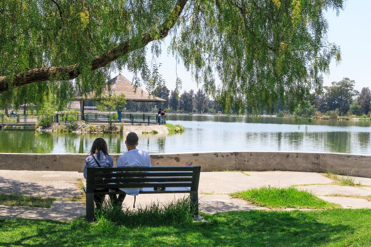 Todo lo que puedes hacer en el encantador Bosque de Aragón