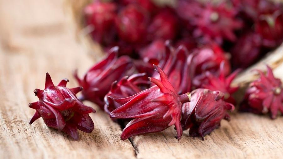 flor-de-jamaica