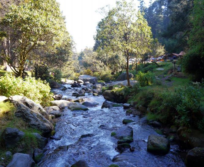 Historia del Río Magdalena, el único río vivo de la CDMX